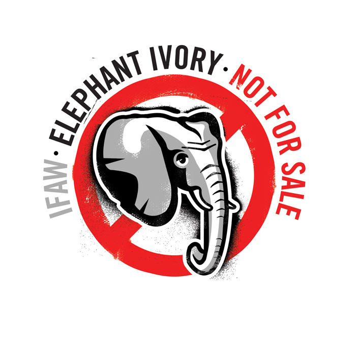 Elephant Ivory – Not For Sale